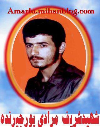 شهید شریف مرادی پور جیرنده